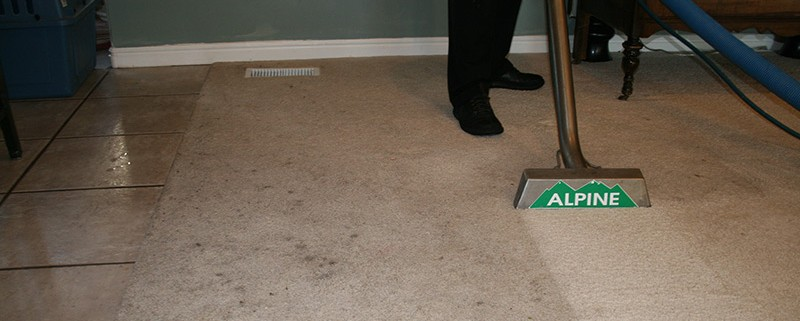 carpet cleaning done by Alpine Cleaning and Restoration