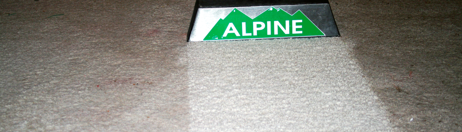 Shows the difference between dirty carpet and clean carpet