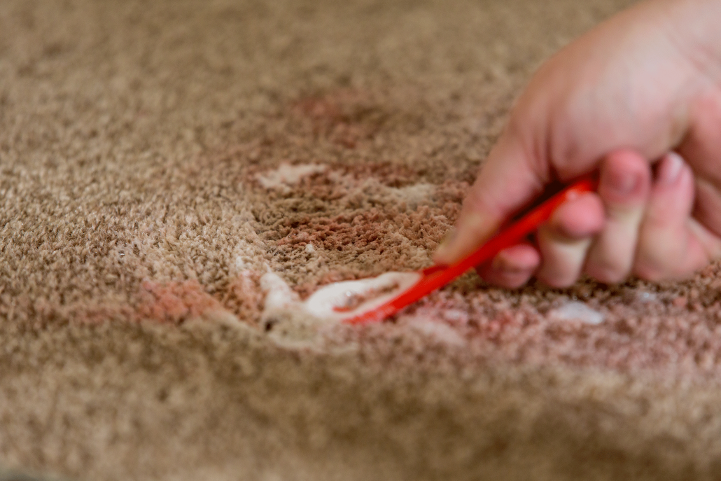 Spot Treating Carpet