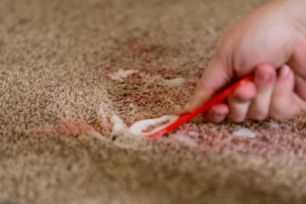 Spot Treating Carpet